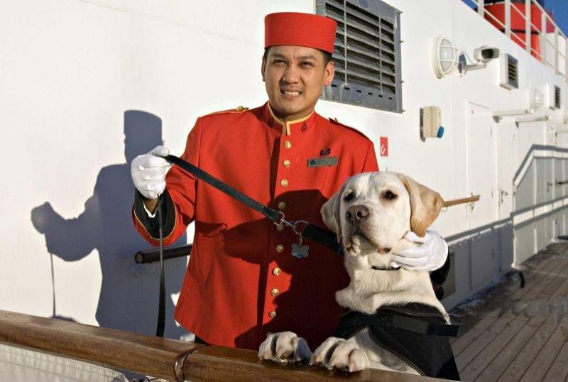 photo Cunard, animaux en croisière sur le Queen Mary 2