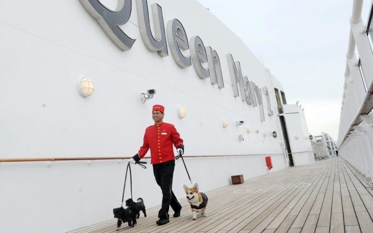 sur le Queen Mary 2, les animaux sont rois